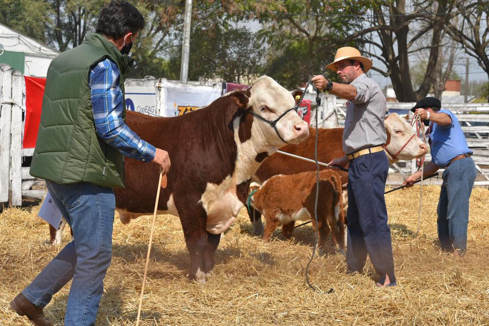 Expo Rural de San Justo_1